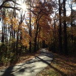 Running This Mile (Did Yoga Improve My Running?)