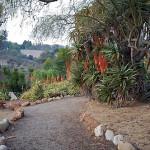 My First Trail Run In Balboa Park San Diego