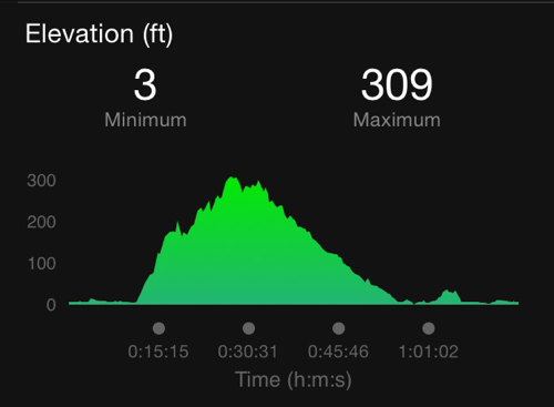 Arlington Loop Elevation - Overcoming Visceral Fear