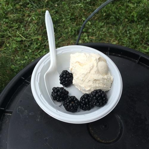 Pine View Dairy Ice Cream